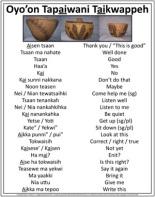 Shoshone-language
